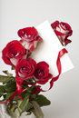 Red roses with card Royalty Free Stock Photo