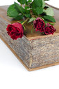 Red roses in a closed book Royalty Free Stock Photography