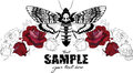 Red roses design with Dead head moth