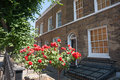 Red roses in front of homes london suburban at typical suburban atteched home as found most residential streets the city Stock Image
