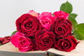 Red roses on a open book Royalty Free Stock Photo