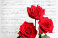 Red Roses And Sheet Music