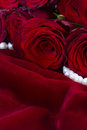 Red roses on velvet Royalty Free Stock Photo