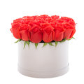 Red roses in white luxury present box. Flower box. Royalty Free Stock Photo