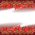 Red rowan and halftone Royalty Free Stock Images