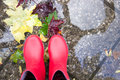 Red rubber boots in a puddle with leaves on the road. Royalty Free Stock Photo
