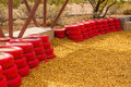Red Rubber Tires Used As Bumpers For Small Children at Desert Pl Royalty Free Stock Photo