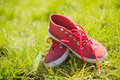 Red running shoes with white laces Royalty Free Stock Photo