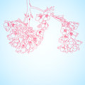 Red sakura flowers blue background with Royalty Free Stock Images