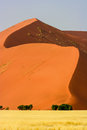 Red sand dune in the Namib desert Royalty Free Stock Image