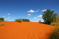 Red sand hill (Australia) Stock Image