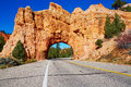 Red sandstone natural bridge in Bryce Canyon National Park in Utah, USA Royalty Free Stock Photo