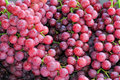 Red Seedless Grapes Royalty Free Stock Photo