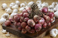 Red shallot onions a group on old chopping wood. Royalty Free Stock Photo