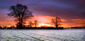 Red Sky over a Field in Scole Diss Norfolk Royalty Free Stock Photo