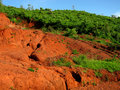 Red soil erosion Stock Photography