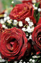 Red sparkling roses bouquet of Royalty Free Stock Image