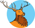 Red stag deer head circle cartoon illustration of a buck facing side set inside on isolated background done in style Royalty Free Stock Image
