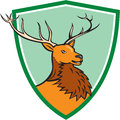 Red stag deer head shield cartoon illustration of a buck facing side set inside crest on isolated background done in style Royalty Free Stock Photography