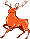 Red Stag Deer Side Marching Cartoon Royalty Free Stock Photo
