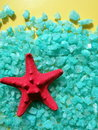 Red starfish on salt Royalty Free Stock Photo