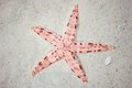 Red starfish on tropical beach Royalty Free Stock Photo