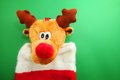 Red stocking reindeer christmas on green background Stock Photo