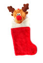 Red stocking reindeer christmas isolated on white Stock Images
