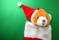 Red stocking teddy bear on green background Royalty Free Stock Images