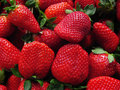 Red strawberries bunch Royalty Free Stock Images