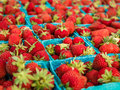 Red Strawberries fruit basket Royalty Free Stock Photo