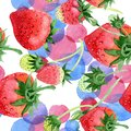 Red strawberries wild fruit. Seamless background pattern. Fabric wallpaper print texture. Royalty Free Stock Photo