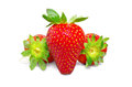 Red strawberry Royalty Free Stock Photos