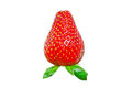 Red strawberry Royalty Free Stock Images