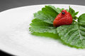 Red strawberry with green leaves on the white plate Stock Photos