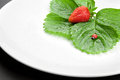 Red strawberry with leaves on the white plate Stock Photography