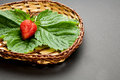 Red strawberry with leaves on the wooden plate Stock Image