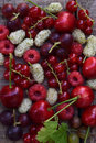 Red summer berries: cherry, mulberry, currant, raspberries on a wooden background Royalty Free Stock Photo