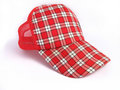 Red Summer Plaid Cap Royalty Free Stock Photos