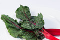 Red swiss chard Royalty Free Stock Photo