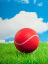 A red tennis ball Royalty Free Stock Photo