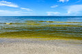 Red Tide Royalty Free Stock Photo