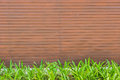 Red tile, brick wall background with green grass Royalty Free Stock Photo