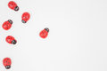 Red tiny bugs on white background Royalty Free Stock Photo
