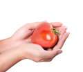 Red tomato Heart  in hands Royalty Free Stock Photography