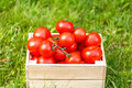 Red tomato in wooden box