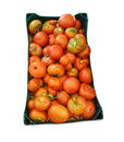 Red tomatoes box isolated white Stock Photos