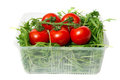 Red tomatoes and green arugula Royalty Free Stock Photos