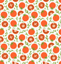 Red tomatoes pattern Royalty Free Stock Photo