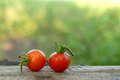 Red tomatoes with rain droplets on wooden floor Stock Images